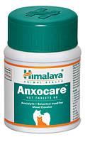 Таблетки для Домашних Животных-Поведение Модификатор, контроль Тревоги, стресс, агрессия / Anxocare, Himalaya