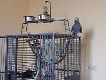 King's CAGES - Вольєр для папуги (темний)