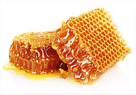 Мед в Сотах 0,5 кг