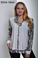 Шифоновая блуза большой размер
