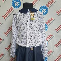 Детская Польская блузка на девочку Catherine