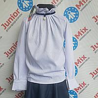 Блузка на девочку воротник стойка  в мелкий горох UMBO