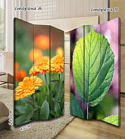 Ширма. перегородка Цветы и лепестки 185 см
