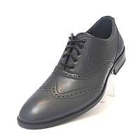 Туфли мужские кожаные классические броги Rosso Avangard FeliceteZo Blu Pelle подошва моноблок, фото 1