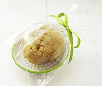 Натуральная морская губка Fina Silk 3-3.5 дюйма & мыльница оливковая