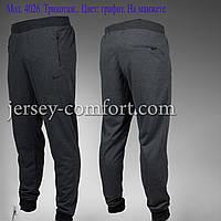 Брюки трикотаж, мужские на манжете. Брюки мужские спортивные.. Спортивные брюки мужские.