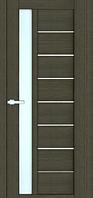 Дверное полотно Cortex Deco Model 09