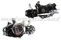 Двигатель Delta 110cc (АКПП, копия двигателя Honda cub с двойным сцеплением) TZH