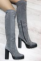 Стильные демисезонные замшевые сапоги ботфорты серого цвета на каблуке