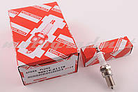 Свеча D8TC DENSO M12*1,25 19,0mm (4T 125\600cc)