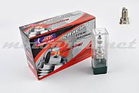 Свеча D8TC IRIDIUM M12*1,25 19,0mm (4T мотоциклы 125-600cc, до 14 атмосфер) (EIX-D8)