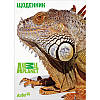 AP16-262 Дневник школьный KITE 2016 Animal Planet 262