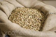 """ОПТ Зеленый Кофе  Робуста """"Черри"""" Индия. Зерновой кофе ОПТОМ - от 60 кг. xcoffee"""