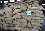 """ОПТ Зеленый Кофе  Робуста """"Черри"""" Индия. Зерновой кофе ОПТОМ - от 60 кг. xcoffee, фото 5"""