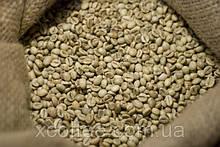 """ОПТ Зеленый Кофе Робуста """"Vietnam"""" Вьетнам. Зерновой кофе ОПТОМ - от 60 кг. xcoffee"""