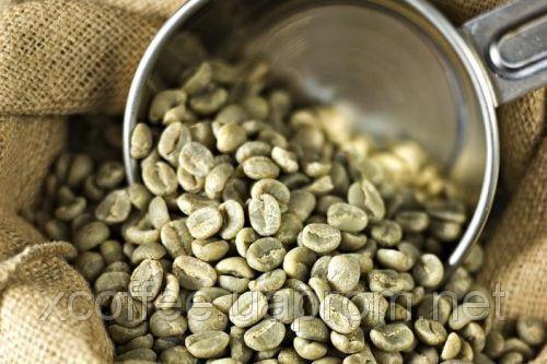 """Опт Зеленый Кофе Арабика """"Сантос"""" Бразилия. Зеленый Кофе Оптом - от 60 кг. xcoffee"""