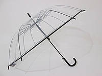 Прозрачный зонт-трость на 14 спиц с черной окантовкой