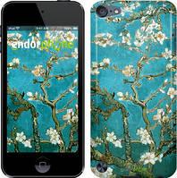 """Чехол на iPod Touch 5 Винсент Ван Гог. Сакура """"841c-35"""""""