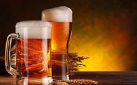 Производство пива в Украине упало до исторического минимума