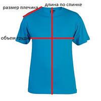 На схеме представлено как правильно провести замеры футболок и поло для заказа по интернету.