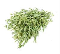 Овес трава 100 грамм (не очищенная зеленая солома овса для заваривания)