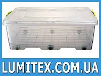 Контейнер пищевой BIGBOX №1 30 литров пластиковый для хранения еды, продуктов