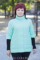 Стильная женская куртка демисезонная ПК1-265 (р.46-52), фото 1