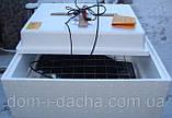 Инкубатор Несушка - 77/220/12в - автомат (аналоговый) с тенами, фото 2