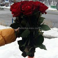 Букет из красных роз 19 шт ( 70-80 см)