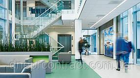 Комерційний гомогенний лінолеум Forbo Sphera Element (Швеція) для офісів
