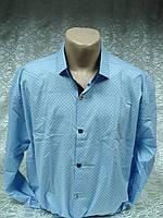 Рубашка Antoni Rossi батал