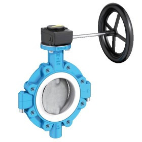 Lug Type Butterfly Valve T 214-C