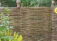 Забор плетень в Киеве