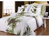 Комплект постельного белья Arya Frassino 2 - спальный
