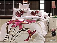 Комплект постельного белья Arya Benigna 1,5 - спальный