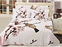 Комплект постельного белья Arya Kayce 1,5 - спальный