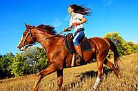 Индивидуальная конная прогулка