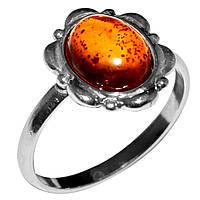 Янтарь Прибалтика, серебро 925, кольцо, 443КЦЯ