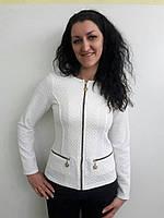 Модный трикотажный приталенный пиджак