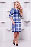 Женское Трикотажное платье Оливия голубая клетка 1126 (50-58)