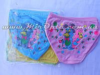 Детские трусы для девочки (4/5 лет) разные цвета