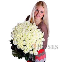 Акито 101 белая роза