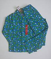 Пижама для мальчика Динозаврик от Primark