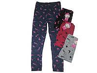 Лосины хлопковые для девочки, Softsail, размеры 104/116 (3), арт. PL-0086