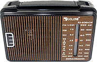 Портативная колонка радиоприемник GOLON 608