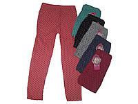 Лосины хлопковые для девочки, Softsail, размеры 104/116,116/128, арт. PL-0088