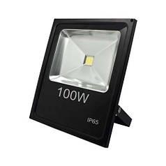 Светодиодный прожектор Feron LL-841 12974