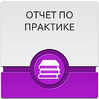 Отчет по практике в Украине Услуги на ua Отчет по практике