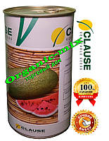 Семена арбуза Чарльстон Грей Clause (Клоз), Франция, ж/б банка 500 грамм