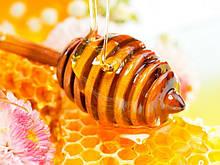 Закупівля меду